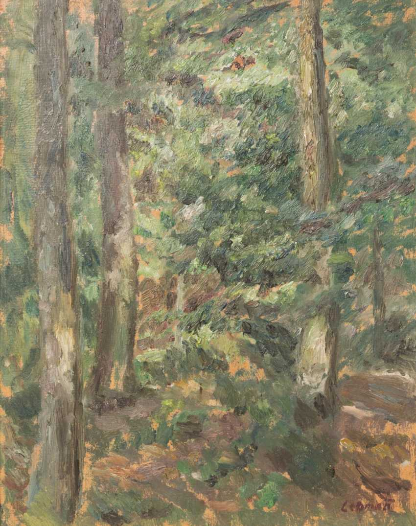 LEHMANN, ALFRED (1899-1979): view in a dense forest, 20. Century, - photo 1