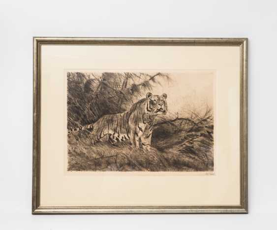 "KUHNERT, WILHELM (1865-1926), ""Tiger in the undergrowth"", - photo 2"