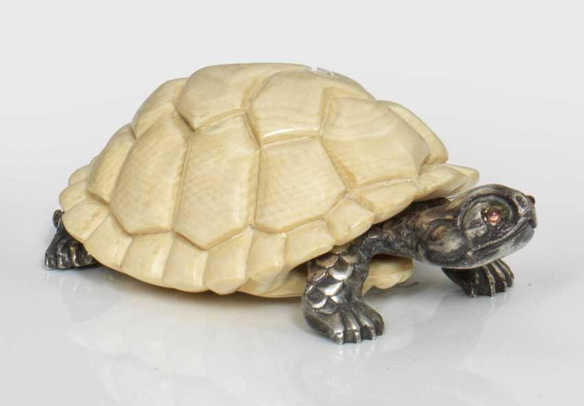 Turtle - photo 1
