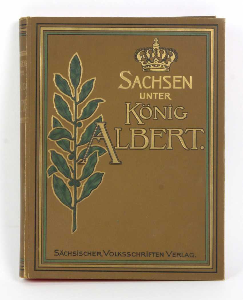 Saxons under king Albert - photo 1
