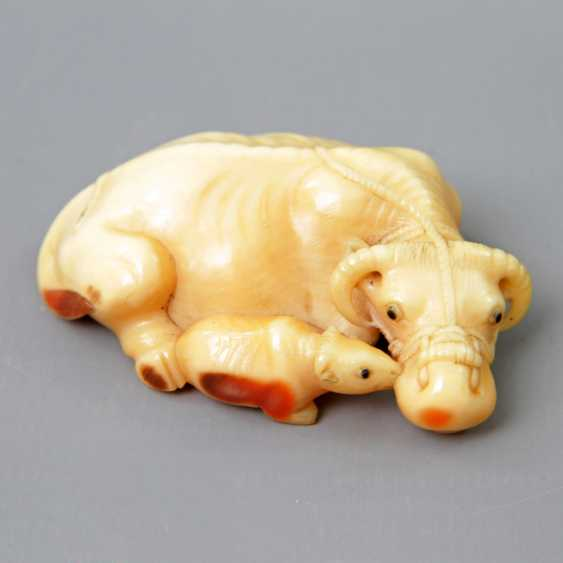 Fine Hornbill Netsuke of an ox. JAPAN, Meiji period, 19th century. Century.