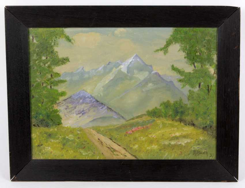 Early summer in the mountains - Barth, H. - photo 1