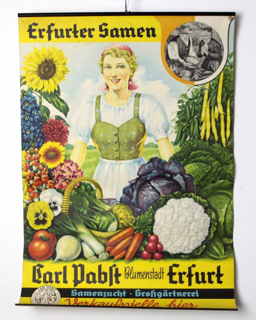 Poster *Promotional Erfurt Seeds* - photo 1