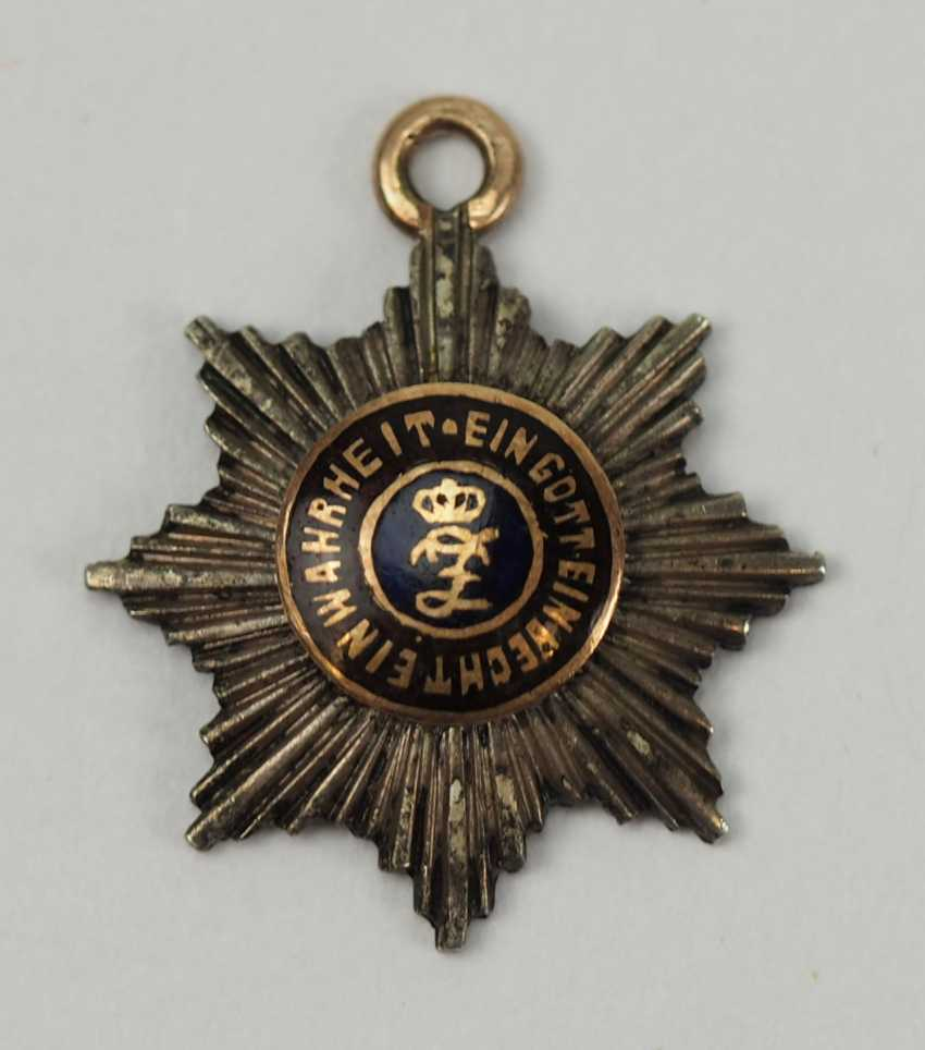 Oldenburg: house - and merit order of Peter Frederick Louis, Grand cross breast star miniature. - photo 1