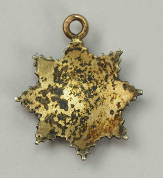 Oldenburg: house - and merit order of Peter Frederick Louis, Grand cross breast star miniature. - photo 3