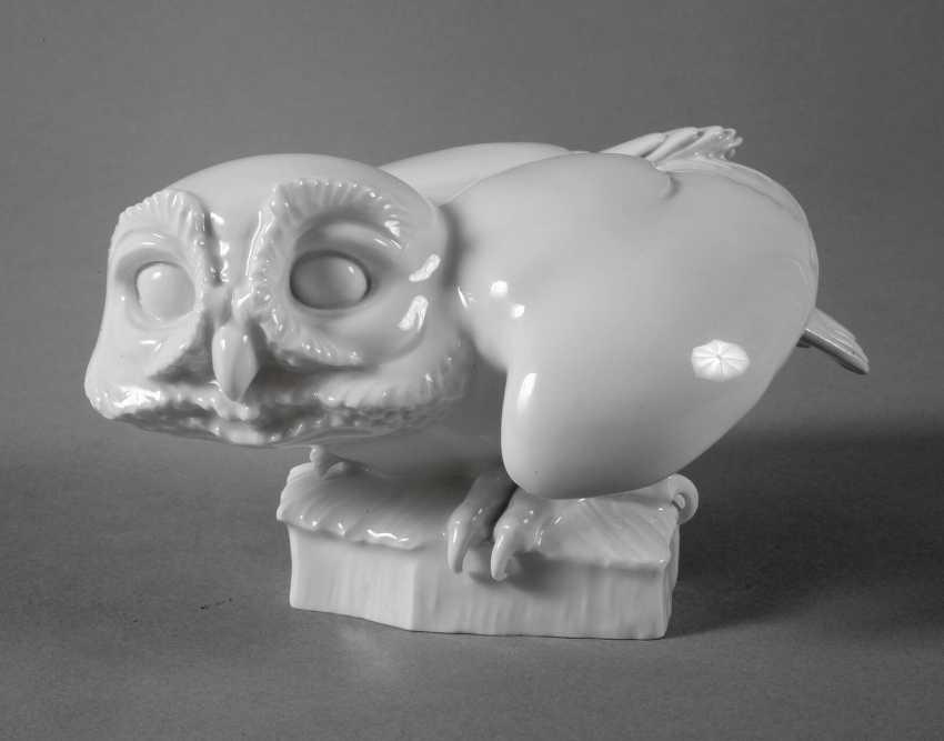 """Meissen """"Screech-Owl"""" - photo 1"""