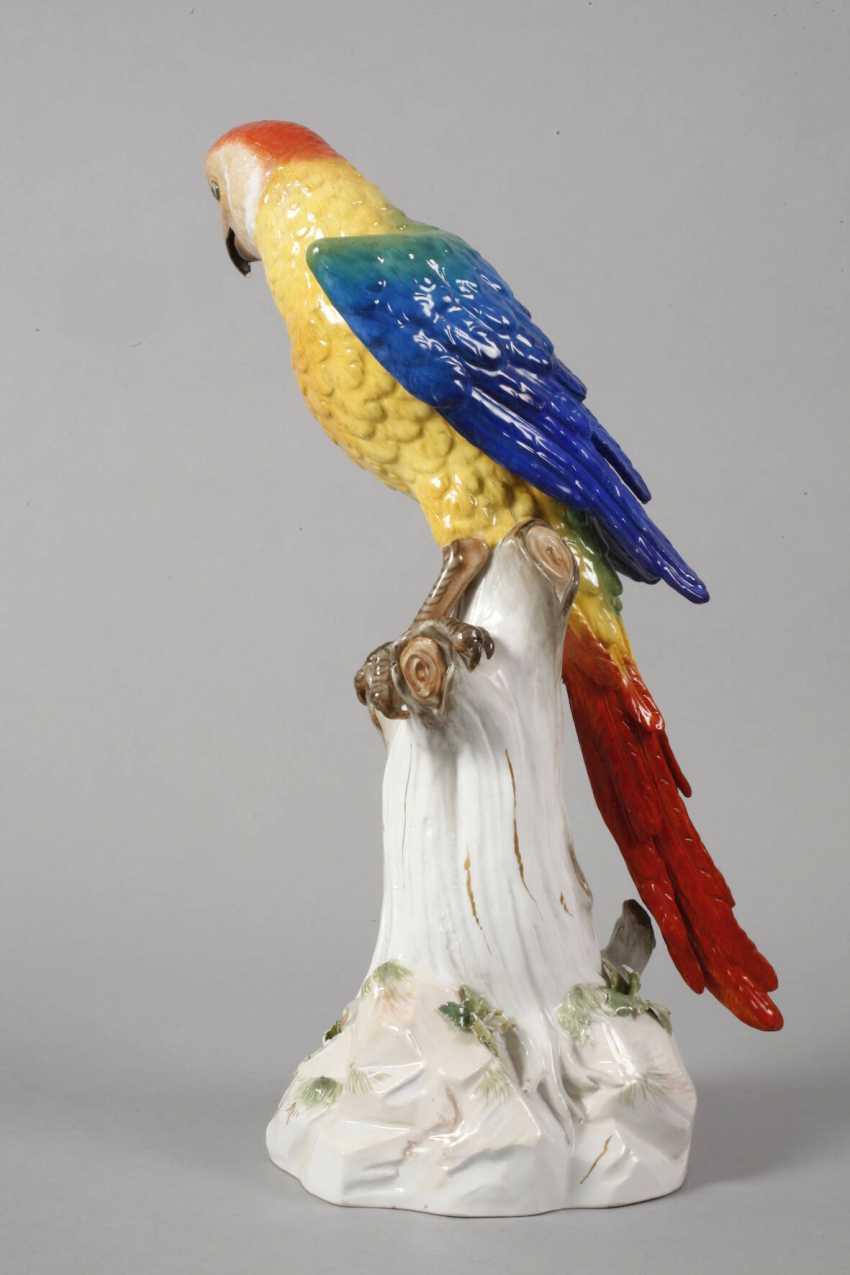 "Meissen ""parrot master"" - photo 3"