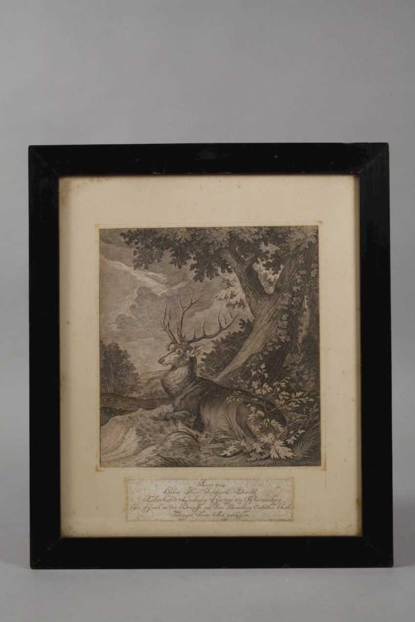 Johann Elias Ridinger, hunting and animal representations - photo 2