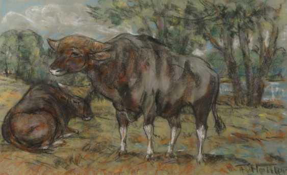 Fritz von Heider, Few cattle - photo 1