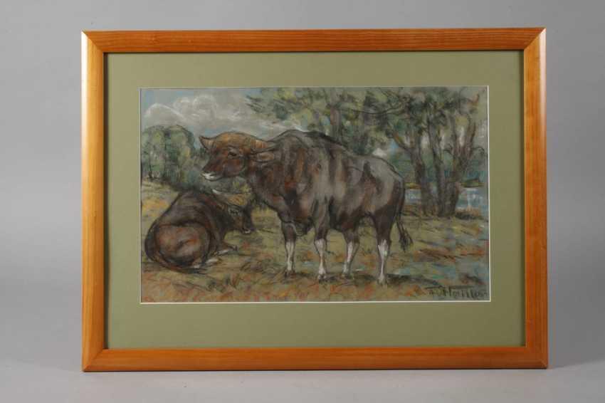 Fritz von Heider, Few cattle - photo 2