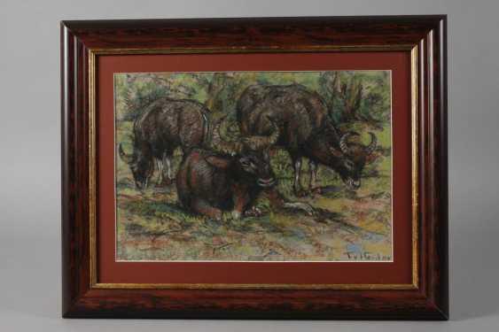 Fritz von Heider, water Buffalo - photo 2