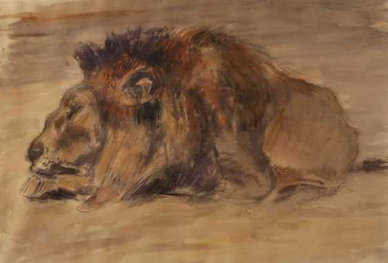 Fritz von Heider, attributed to the Dormant lion - photo 1