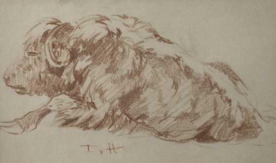 Fritz von Heider, bison - photo 1