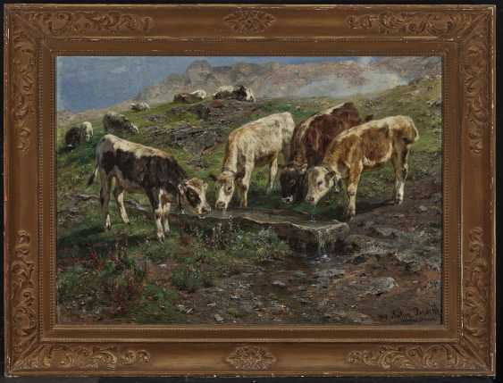Four young cattle at the watering hole - photo 2