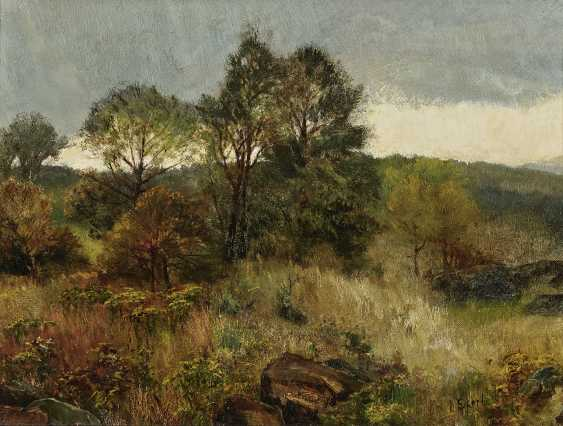 Landscape with trees and rocks - photo 1