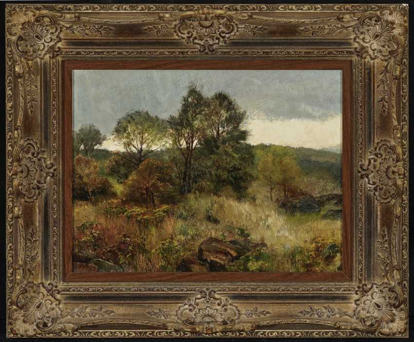 Landscape with trees and rocks - photo 2