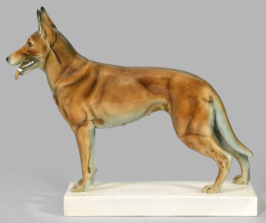 Great Shepherd Dog - photo 1