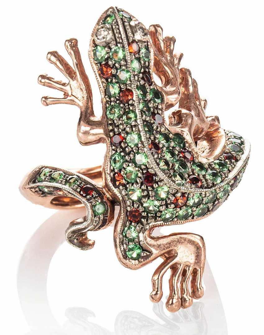 Ring Salamander - photo 1