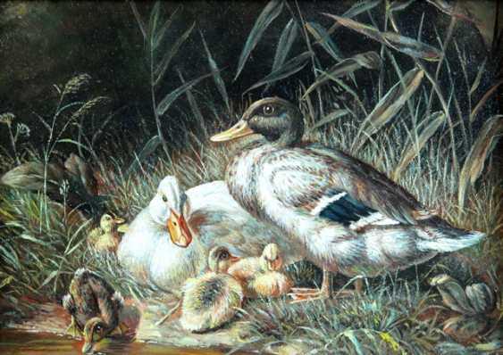 Animal painter - photo 1