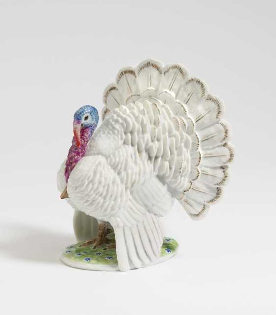 """'Turkey"""" - photo 1"""
