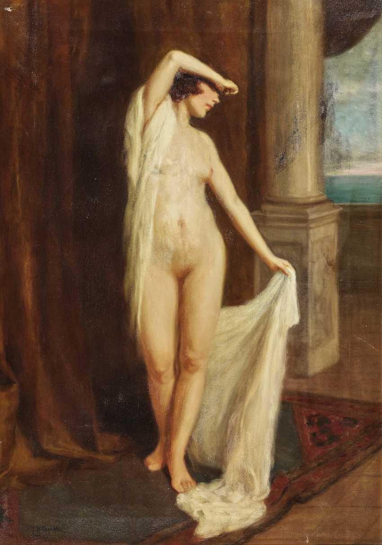 Female Nude - photo 1