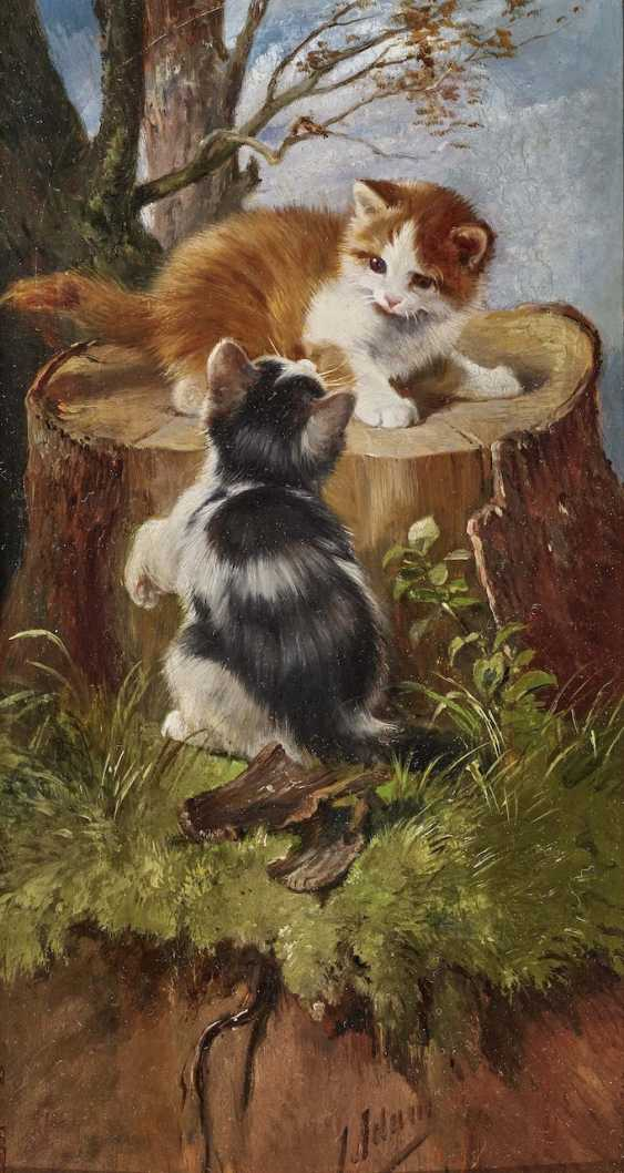 Two the end of the game kittens on a tree stump - photo 1