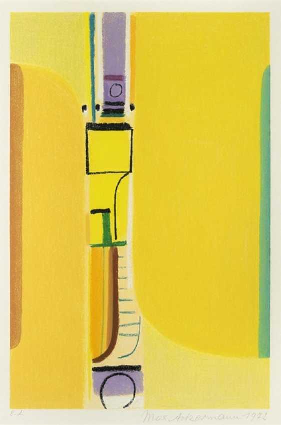 Ackermann, Max - Radiant Door - photo 1
