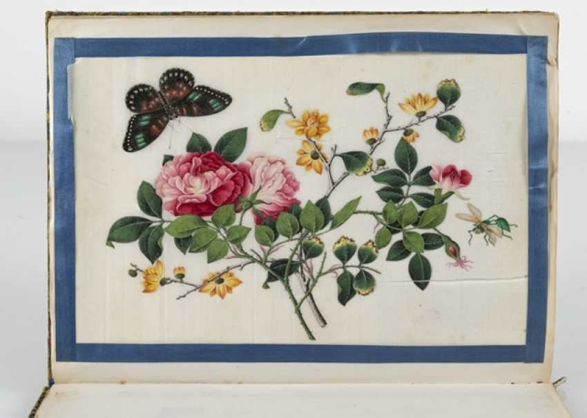 Album with 19 portraits of nobles, floral scenes and butterflies - photo 5