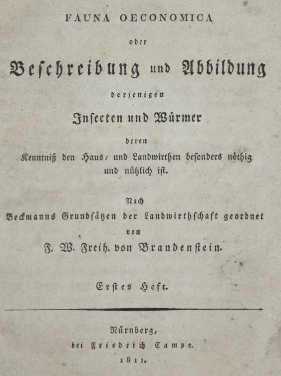 Brandenstein, F.W.v. - photo 1