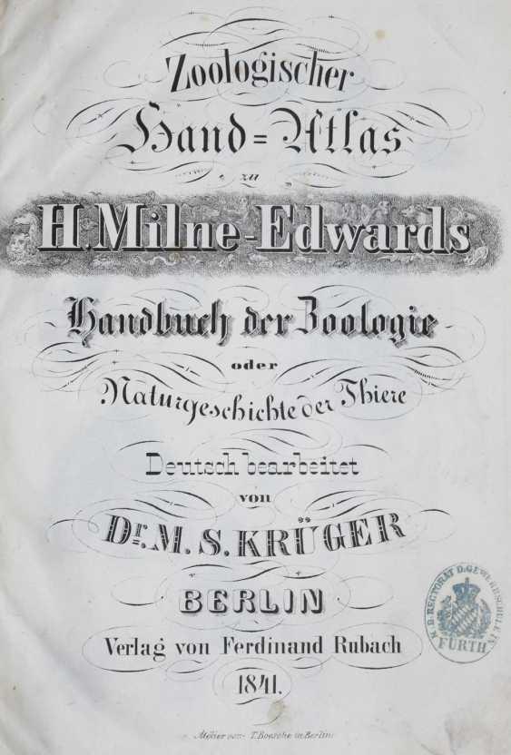 Milne-Edwards, H. - photo 1