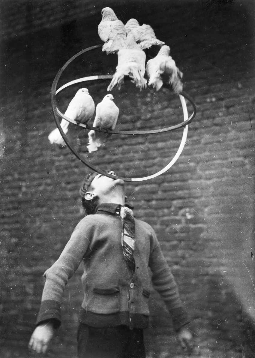 Circus, Germany 1940 ca - photo 1
