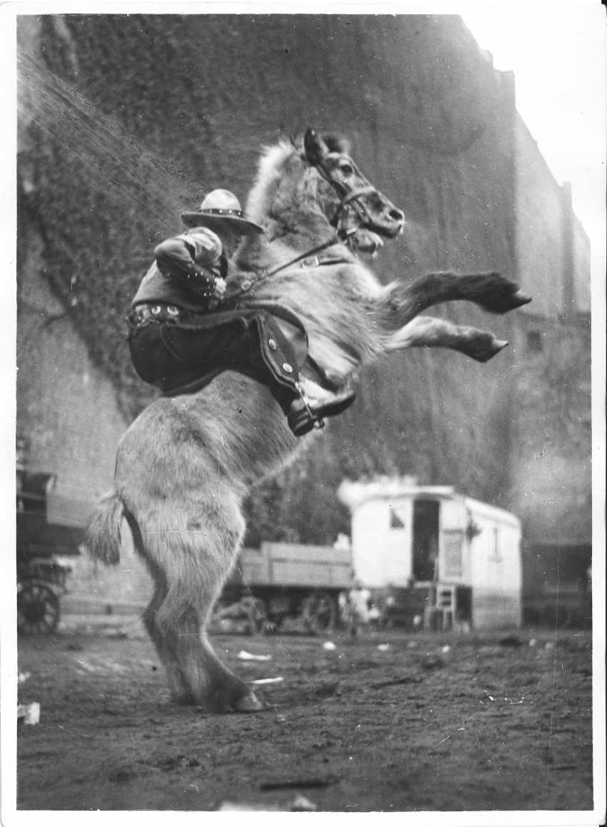 Circus, Germany 1940 ca - photo 7