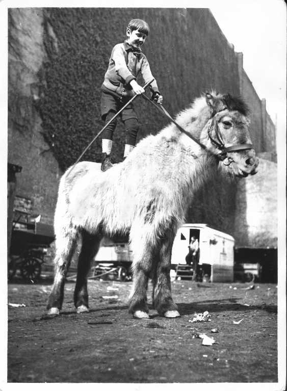 Circus, Germany 1940 ca - photo 9