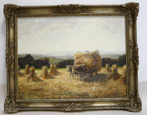 Otto Pippel, team of oxen in the hay - photo 2