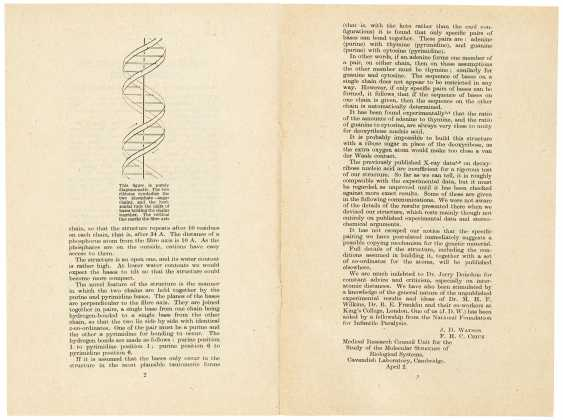 The first published account of the molecular structure of DNA - photo 2