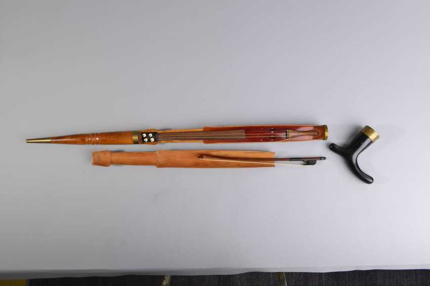 The violin in the walking stick - photo 4