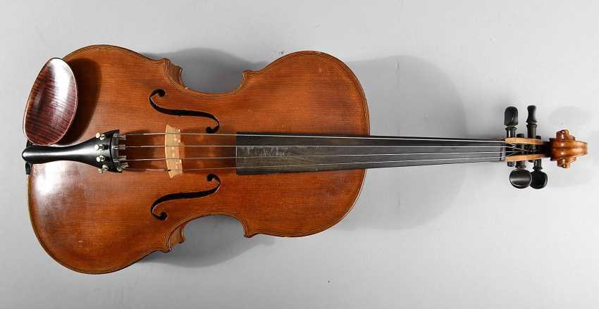 Asymmetrical Viola - photo 1