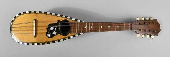 Small-Mandoline - photo 1