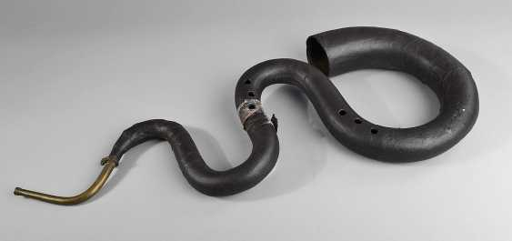 Serpent - photo 1