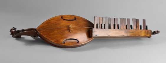 Monochord - photo 1