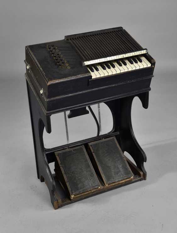 Chord Harmonium - photo 1