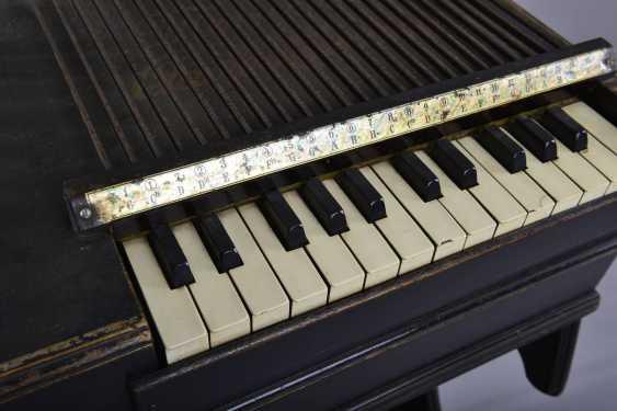 Chord Harmonium - photo 2