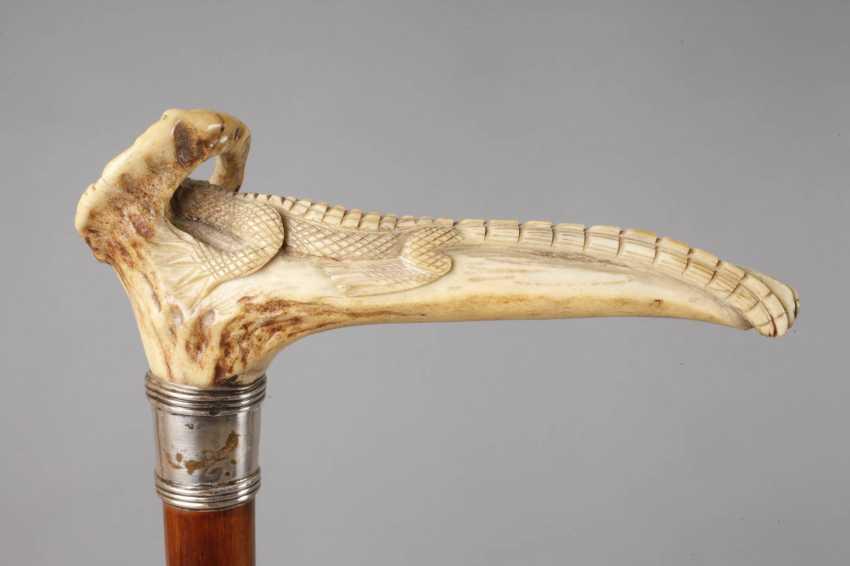 Walking Stick Horn - photo 3