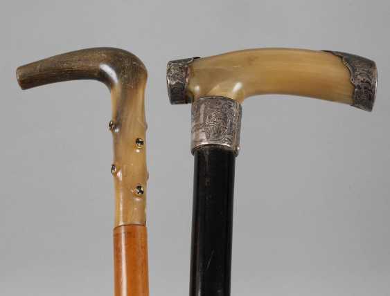 Two Walking Sticks Horn - photo 1