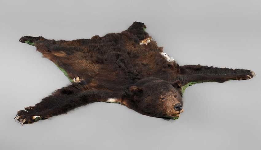 Fur of a brown bear - photo 1