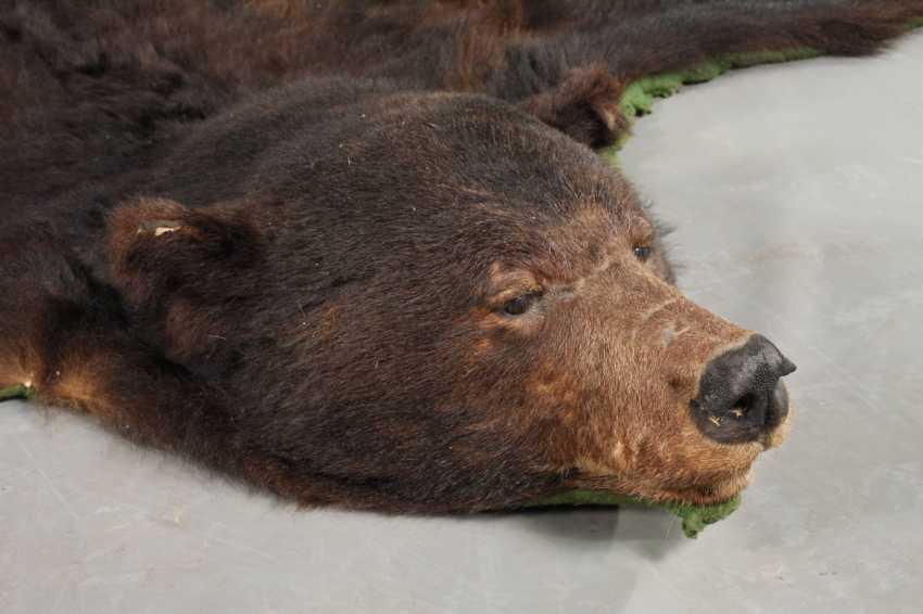 Fur of a brown bear - photo 2