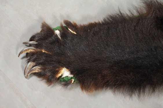 Fur of a brown bear - photo 3