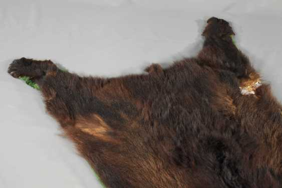Fur of a brown bear - photo 4