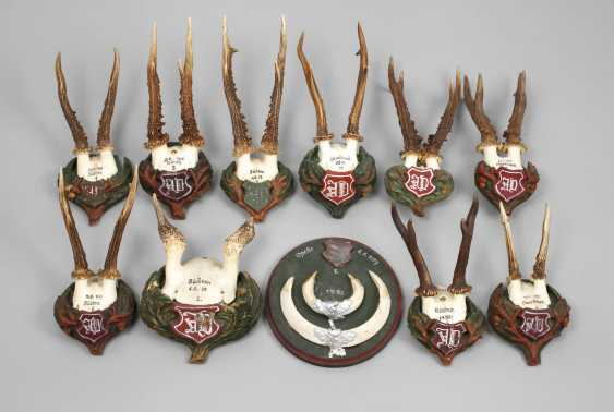 Collection Of Hunting Trophies - photo 1