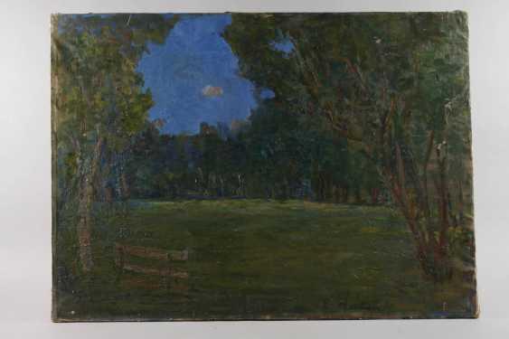 Abendstimmung im Park - Foto 2